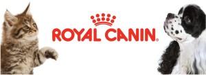 Banner  Logo Royal Canin